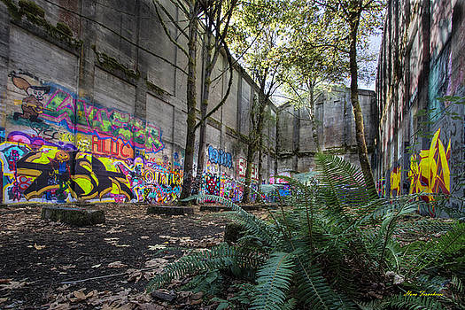 Graffiti at the old mill by Hans Franchesco