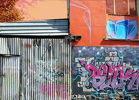 Graffiti Wall Melbourne by Roz McQuillan