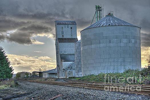 Grain Elevator by Craig Leaper