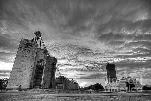 Art Whitton - Grain Elevators at Dusk black and white