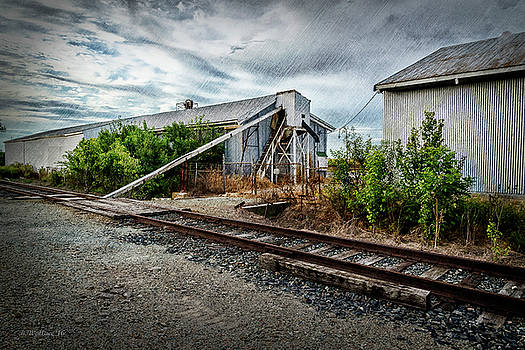 Grain For Train by Brian Wallace