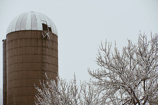 Grain Silo by Betsy Armour