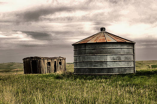 Grain silo and shed in a North Dakota Field  by Jeff Swan