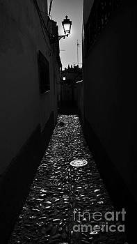 Granada Callejon by Tony Lee