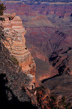 Donna Corless - Grand Canyon 11