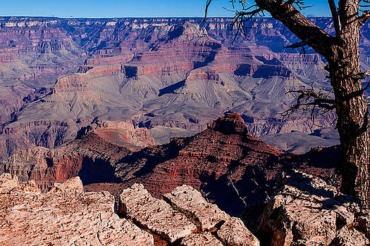 Donna Corless - Grand Canyon 7