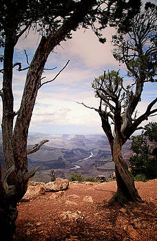 Grand Canyon, AZ by James Bethanis