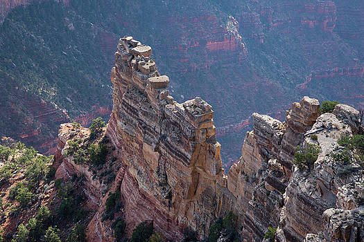 Grand Canyon - Cape Royal 2 by Frank Madia