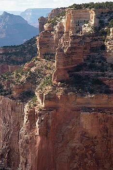 Grand Canyon - Cape Royal by Frank Madia