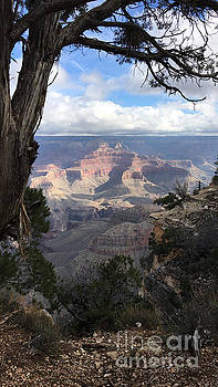 Grand Canyon Experience  by JD Poplin