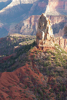 Grand Canyon From The North Rim 2 by Frank Madia
