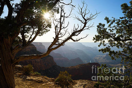 Jamie Pham - Grand Canyon Light