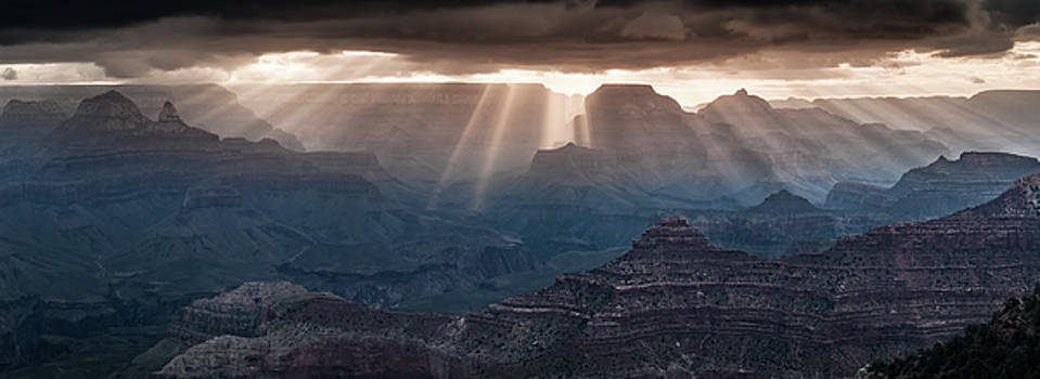 Grand Canyon morning light show pano by William Lee