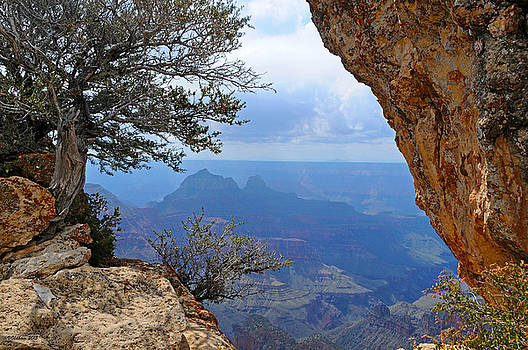 Grand Canyon North Rim Window in the Rock by Victoria Oldham