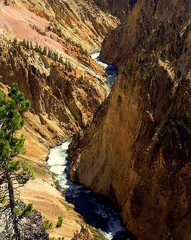 Marty Koch - Grand Canyon of the Yellowstone 2