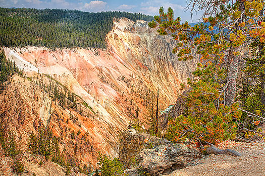 Grand Canyon of the Yellowstone by John M Bailey