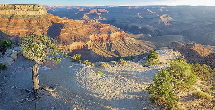 Tony Crehan - Grand Canyon Sunrise and Shadows
