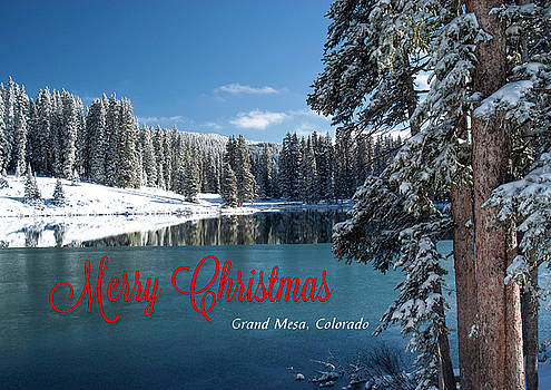 Grand Mesa Christmas Card by Roy Kastning