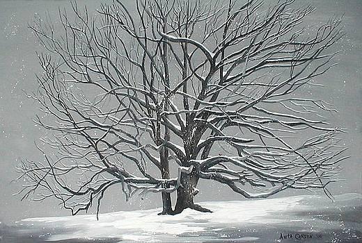 Grand Old Oak in Winter by Anita Carden