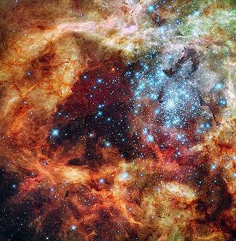 Grand Star-forming Region R136 in NGC 2070 by NASA and the European Space Agency
