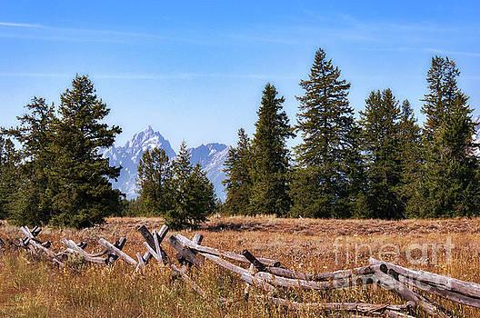 Grand Teton and Fence by Sharon Seaward