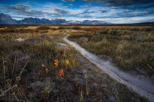 Grand Teton National Park - Lost Trail by Jason Penland
