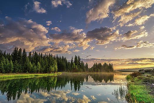 Grand Teton National Park - Spring Abounds  by Jason Penland