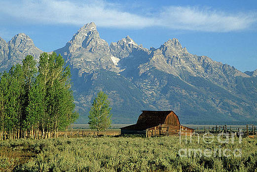 Grand Teton National Park, Wyoming by Kevin Shields