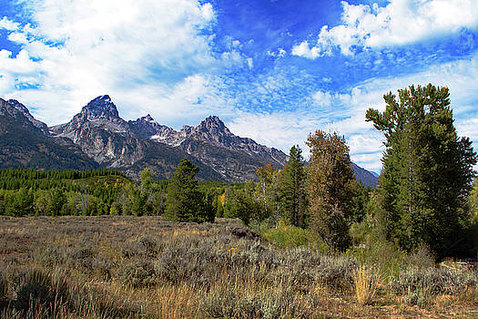 Grand Tetons Against Blue Sky And White Clouds by David Hintz