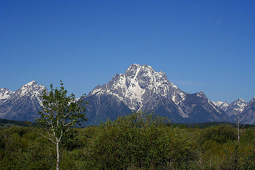 Grand Tetons M5098 by Mary Gaines