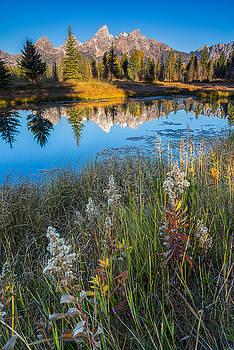 Grand Teton National Park - Schawbachers Landing  by Jason Penland