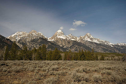 Grand Tetons by Nicole Meyer