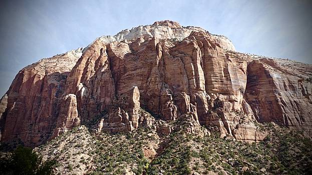 Grand View Zion  by Travis Deaton