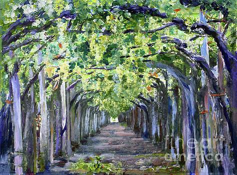 Donna Walsh - Grape Arbor
