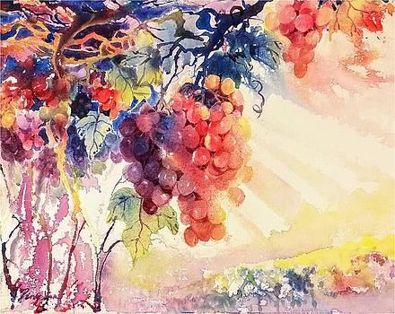 Grape Garden by Ping Yan