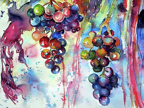Grapes cd by Kovacs Anna Brigitta