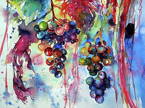 Grapes cd2 by Kovacs Anna Brigitta