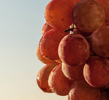 Grapes cluster by Sergey Simanovsky