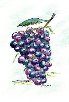 Grapes by Melody Allen