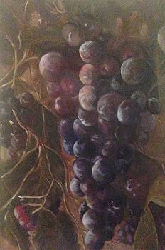 Grapes on a vine ca. by Chuck Gebhardt