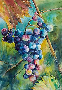 Grapes on the Vine by Adam VanHouten