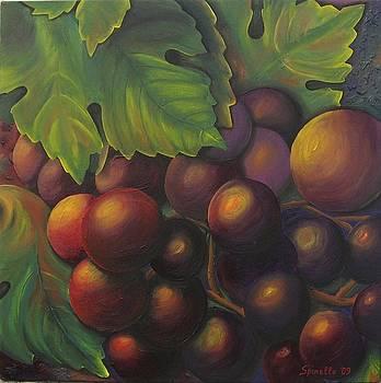 Grapes Under a Warm Sun by Alex Spinello