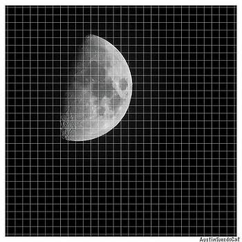 Graphing The #moon In by Austin Tuxedo Cat
