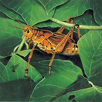 Grasshopper by Durwood Coffey