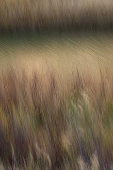 Grassy Bank by Deborah Hughes