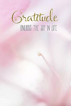 Gratituse Unlocks the Joy by Ramona Murdock