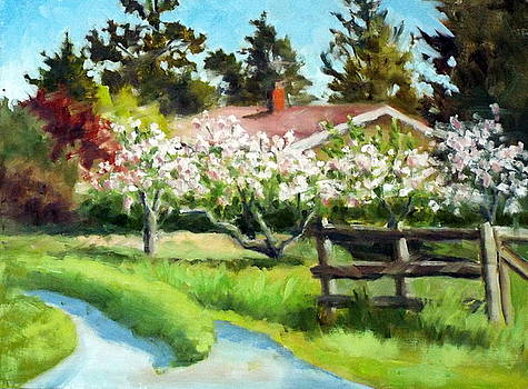 Gravenstein Apple Blossoms by Char Wood
