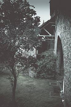 Gravensteen by Elena Ivanova IvEA