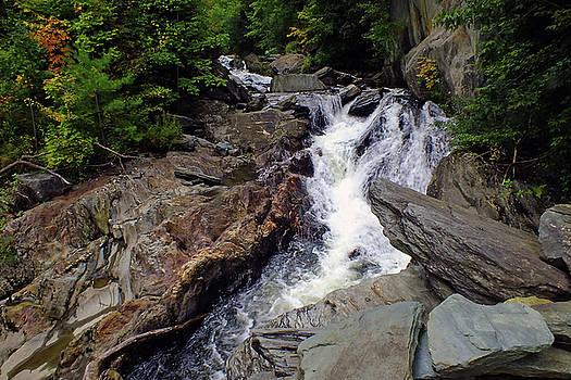 Graves Brook Waterfall by Bill Morgenstern