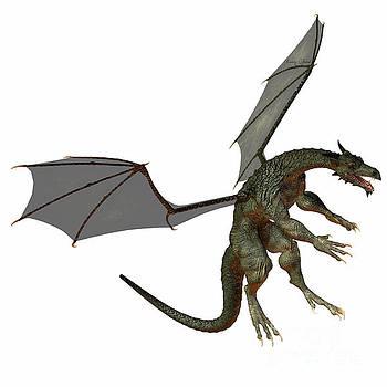 Corey Ford - Gray Brown Dragon